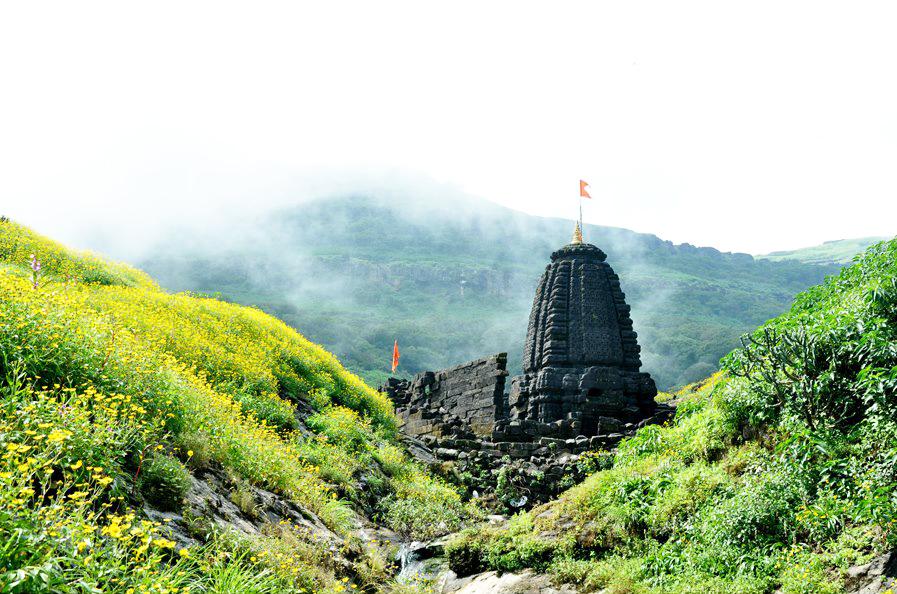 harichandra