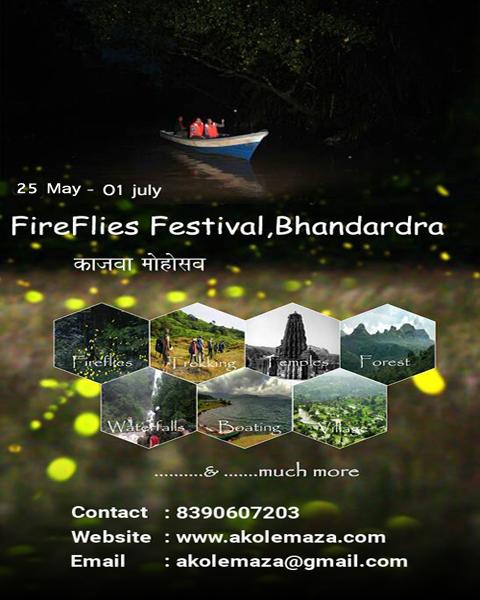 FireFlies-Festival-Bhandardara.